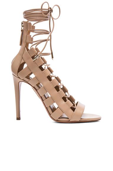 Amazon Leather Heels