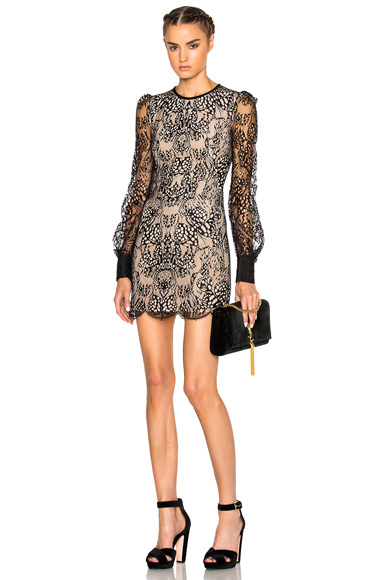 Butterfly Lace Mini Dress on Black & Flesh