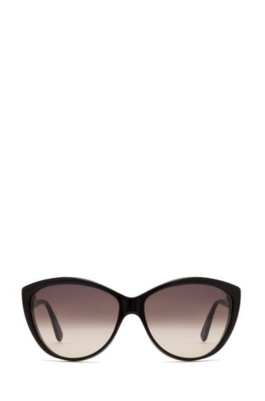 4147 Sunglasses