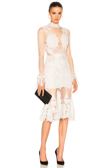 Linear Dome Lace Dress