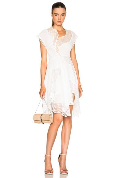 Clotilde Mesh Dress