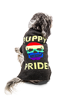Puppy Pride Dog Sweater – Charcoal & Rainbow