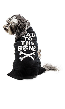 Bad To The Bone Dog Sweater – 黑色 & 白色骷髅头骨