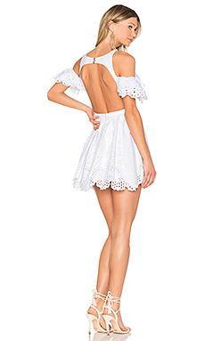 LADY EDWINA 裙子
