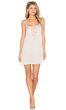 Lace Chemise in Ivory