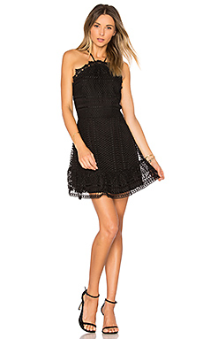 Benjamin Lace Mini Dress in Black
