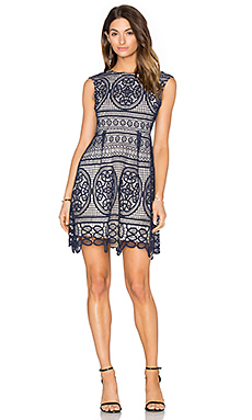Lady Like Fit & Flare Dress in Navy & Nude Lining